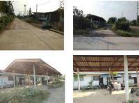 ที่ดินพร้อมสิ่งปลูกสร้างหลุดจำนอง ธ.ธนาคารกรุงไทย ทับคาง เขาย้อย เพชรบุรี